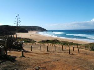 Praia-Amado-Homespot
